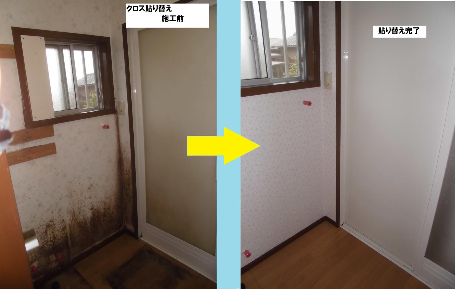 湿気の多い部屋はカビが繁殖